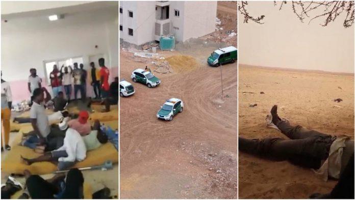 algerie-expulsions
