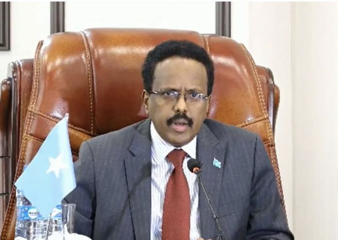 President Farmajo accuses foreign countries of interfering in elections