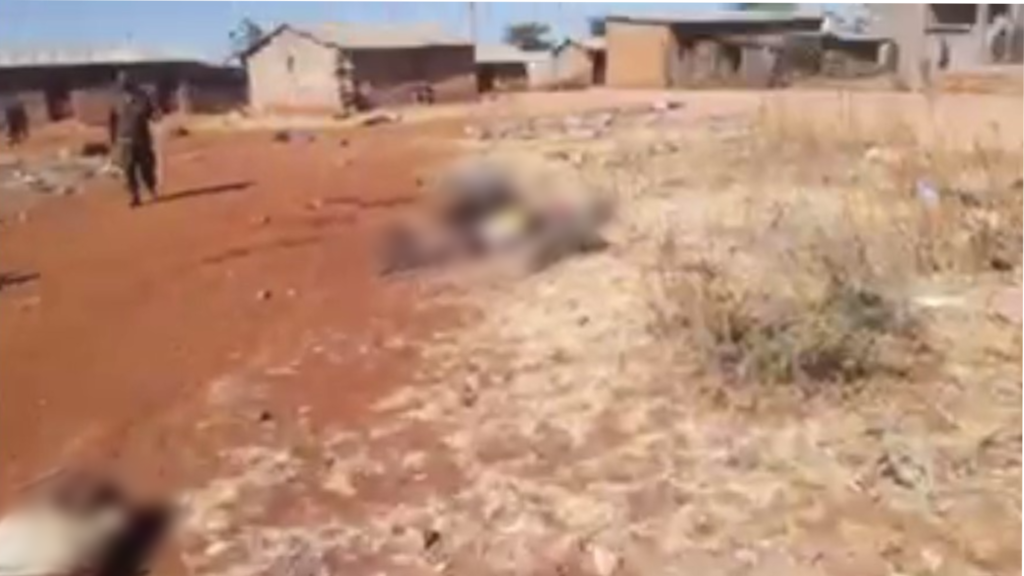 """video of tigray massacre lifts lid on """"war without photos"""""""